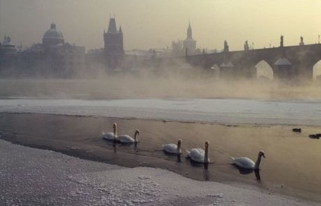 Running and Jogging Tours in Prague